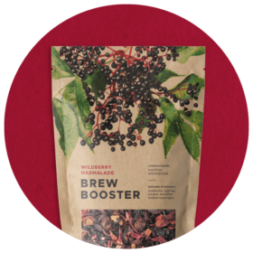 kombucha review icon brew booster
